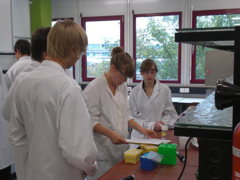 Students in a laboratory