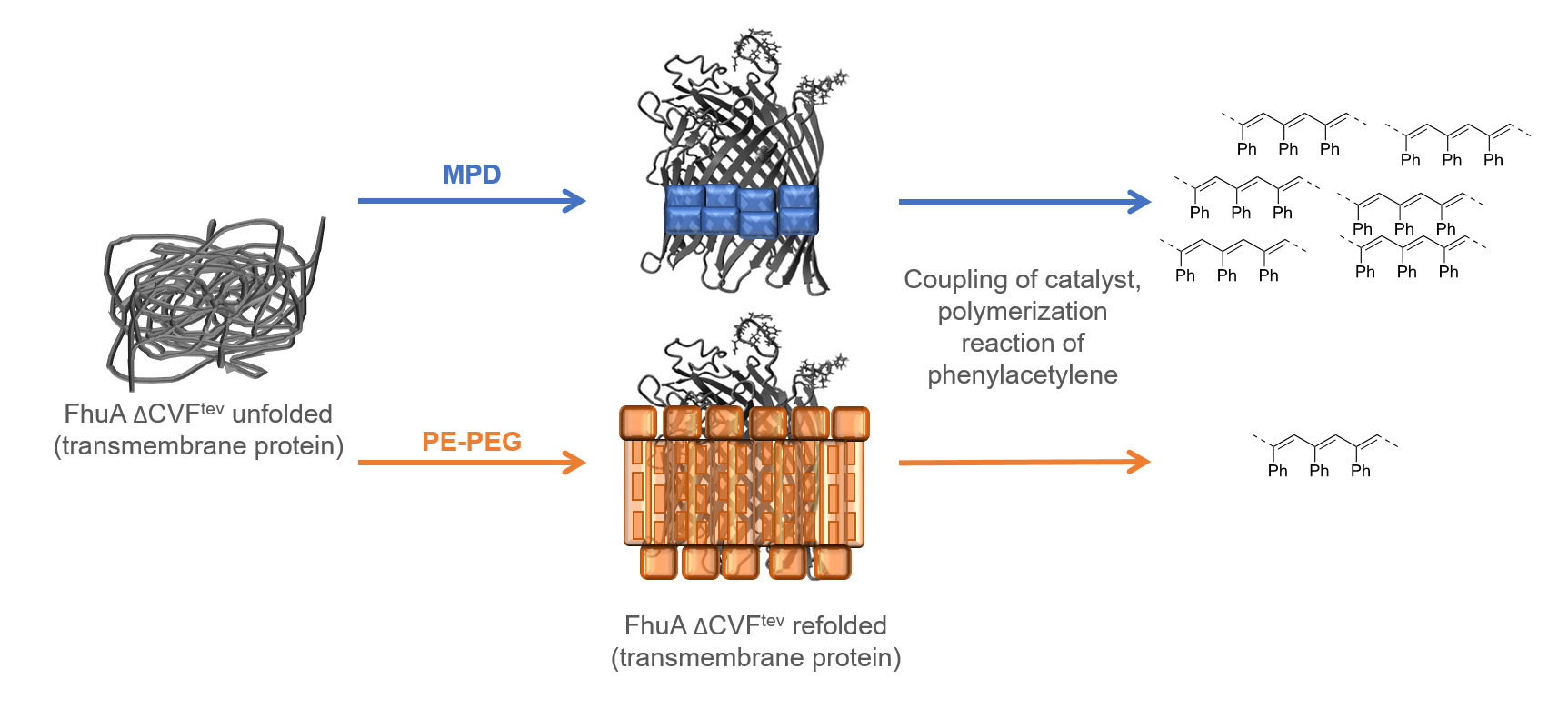MPD as detergent-substitute for hybrid catalyst