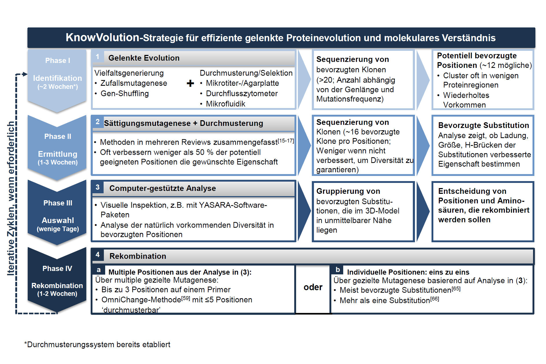 KnowVolution Strategie