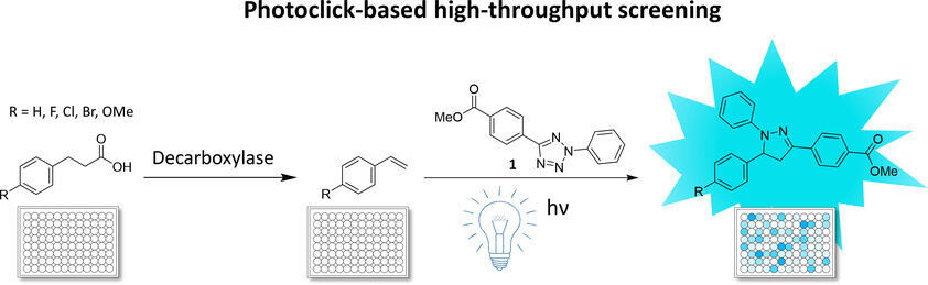 A photoclick‐based high‐throughput screening for the directed evolution of decarboxylase OleT